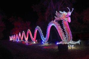 festival_lanternes_gaillac-tarn-dragon-seul